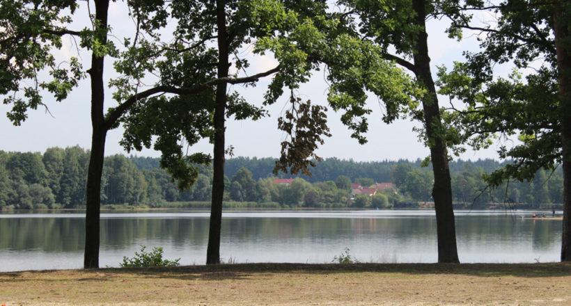 Pohled na rybník z kempu Hejtman